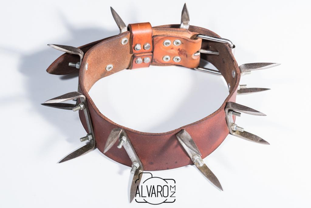 carlanca-collar-cuero-expo-lobo-carlos-sanz-2482