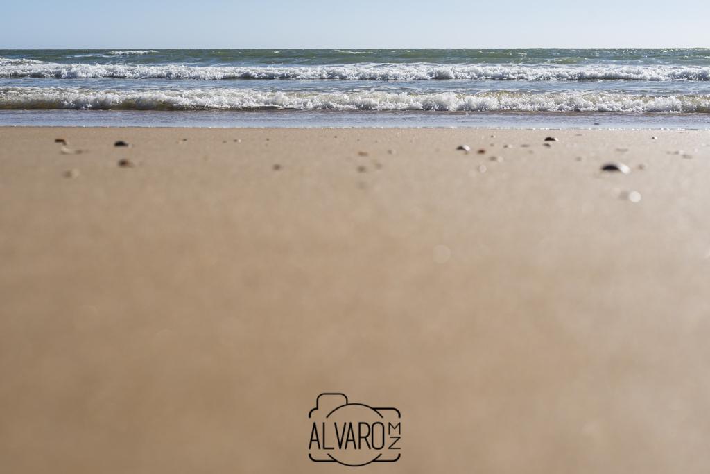 playa-camping-donana_dsc6727